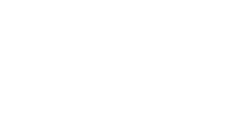 International Lyme Associated Diseases